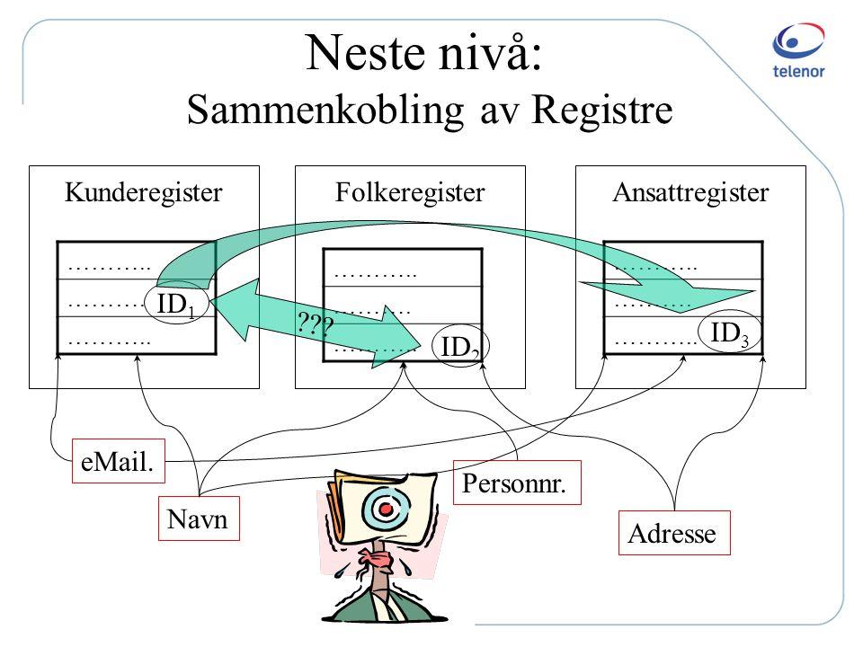 Neste nivå: Sammenkobling av Registre