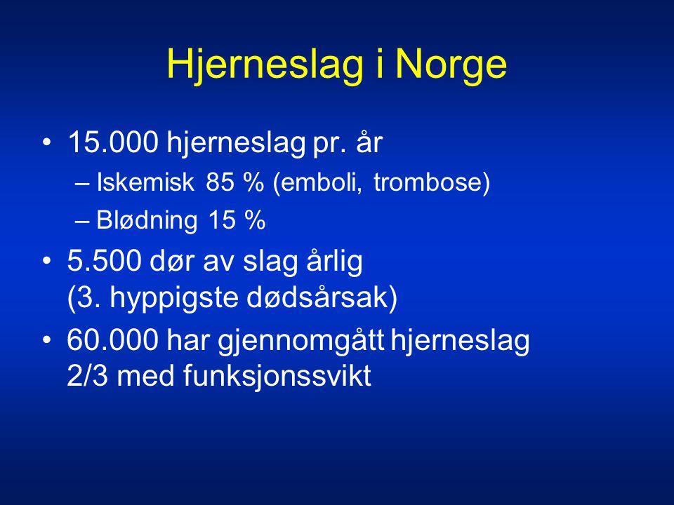 Hjerneslag i Norge 15.000 hjerneslag pr. år