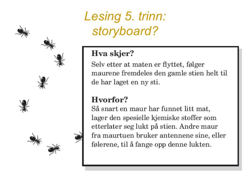 Lesing 5. trinn: storyboard