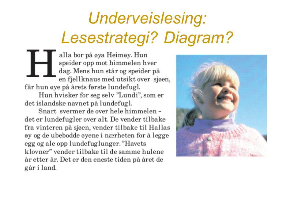 Underveislesing: Lesestrategi Diagram