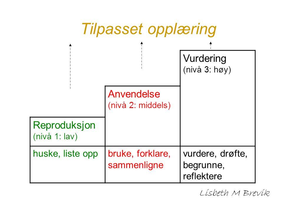 Tilpasset opplæring Vurdering Anvendelse (nivå 2: middels)