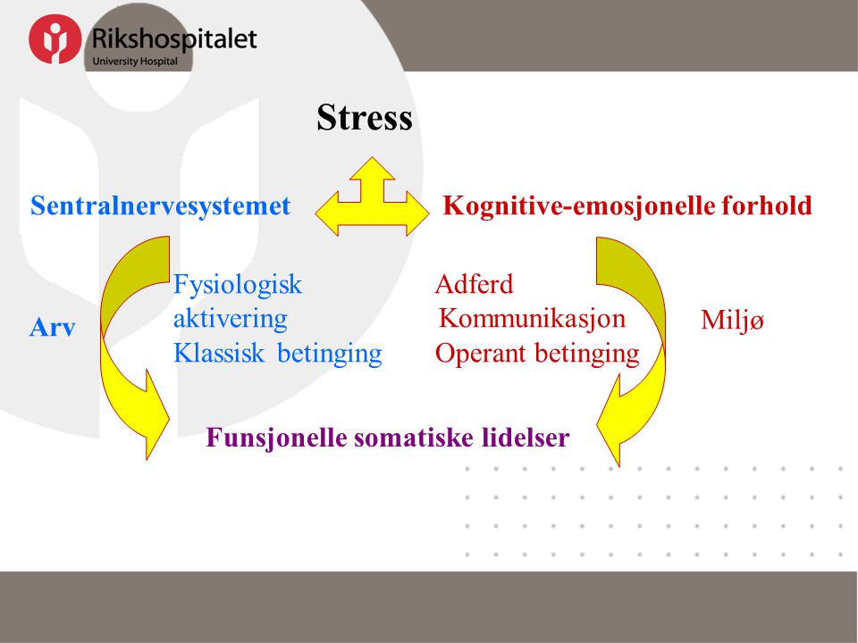 Stress Sentralnervesystemet Kognitive-emosjonelle forhold
