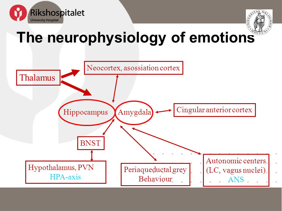The neurophysiology of emotions
