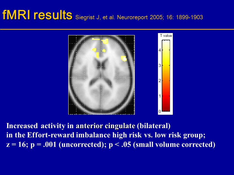 fMRI results Siegrist J, et al. Neuroreport 2005; 16: 1899-1903