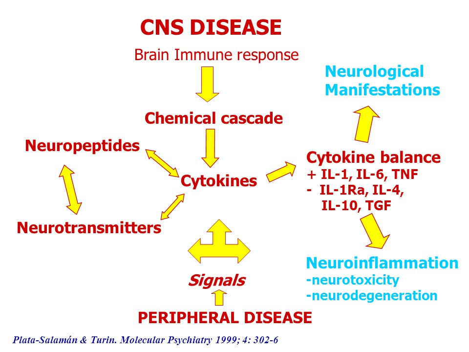 CNS DISEASE Brain Immune response Neurological Manifestations