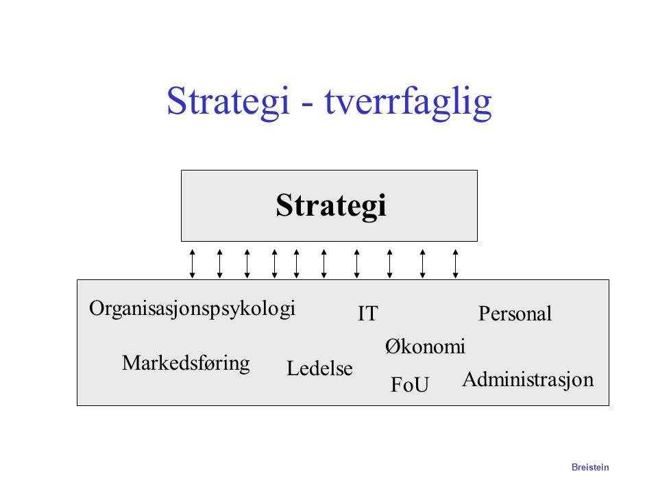 Strategi - tverrfaglig