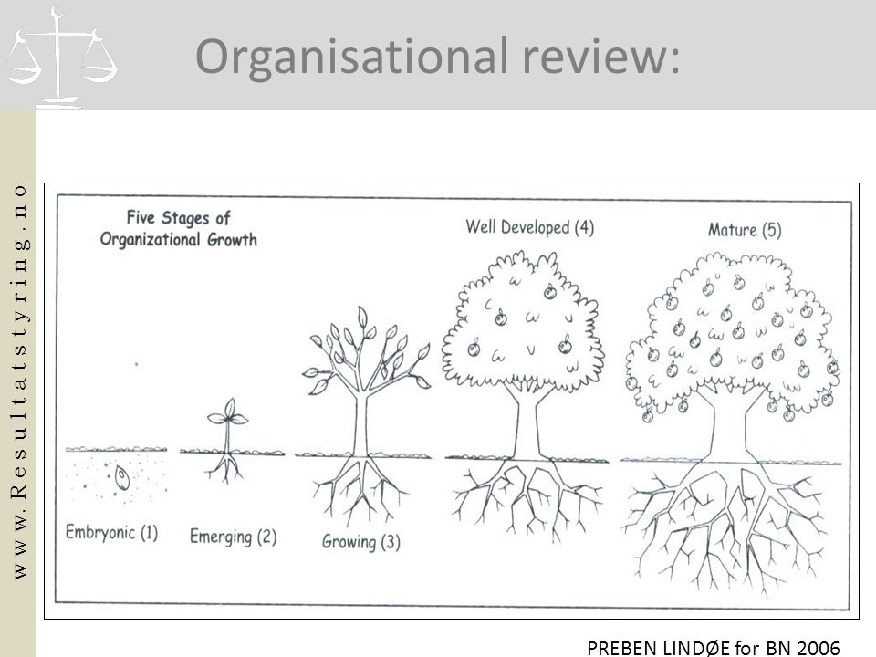 Organisational review: