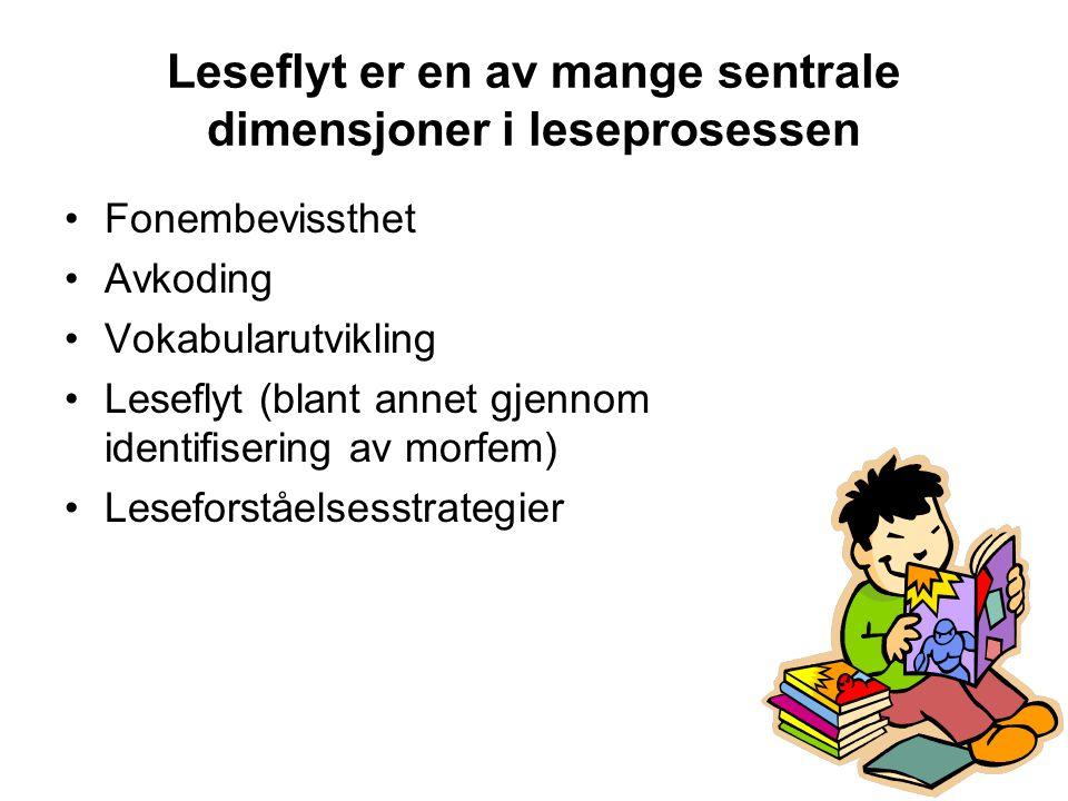 Leseflyt er en av mange sentrale dimensjoner i leseprosessen