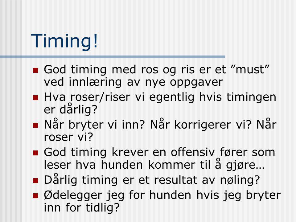 Timing! God timing med ros og ris er et must ved innlæring av nye oppgaver. Hva roser/riser vi egentlig hvis timingen er dårlig