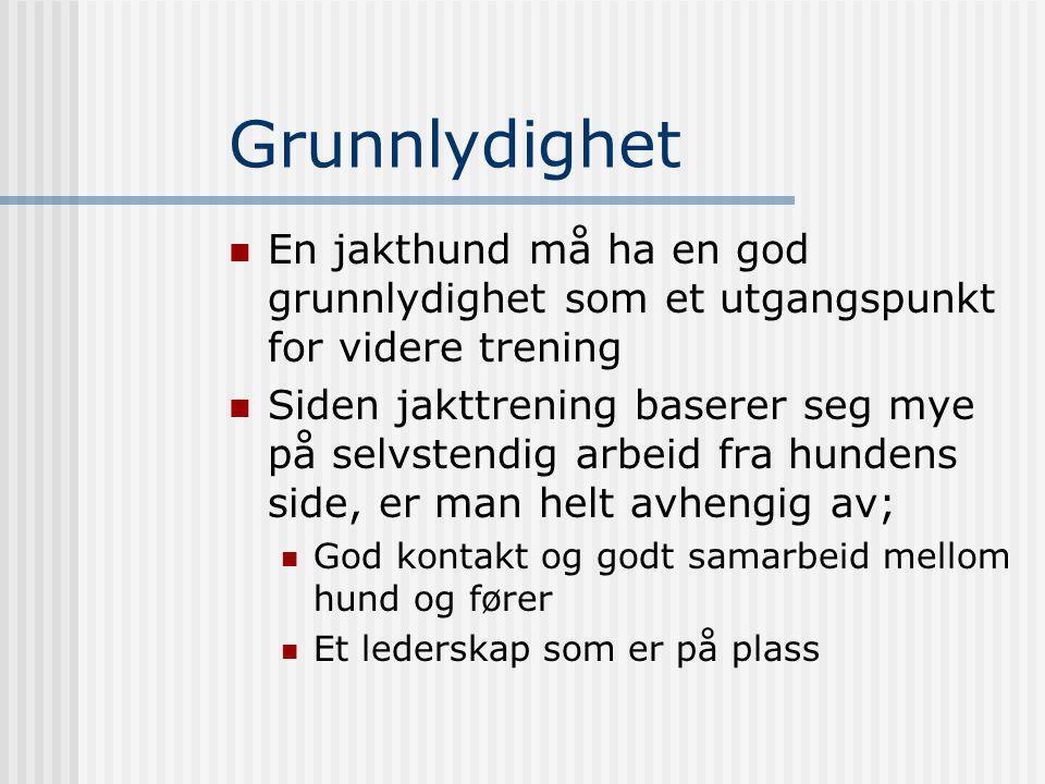 Grunnlydighet En jakthund må ha en god grunnlydighet som et utgangspunkt for videre trening.