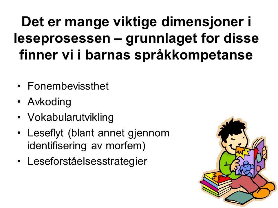 Det er mange viktige dimensjoner i leseprosessen – grunnlaget for disse finner vi i barnas språkkompetanse