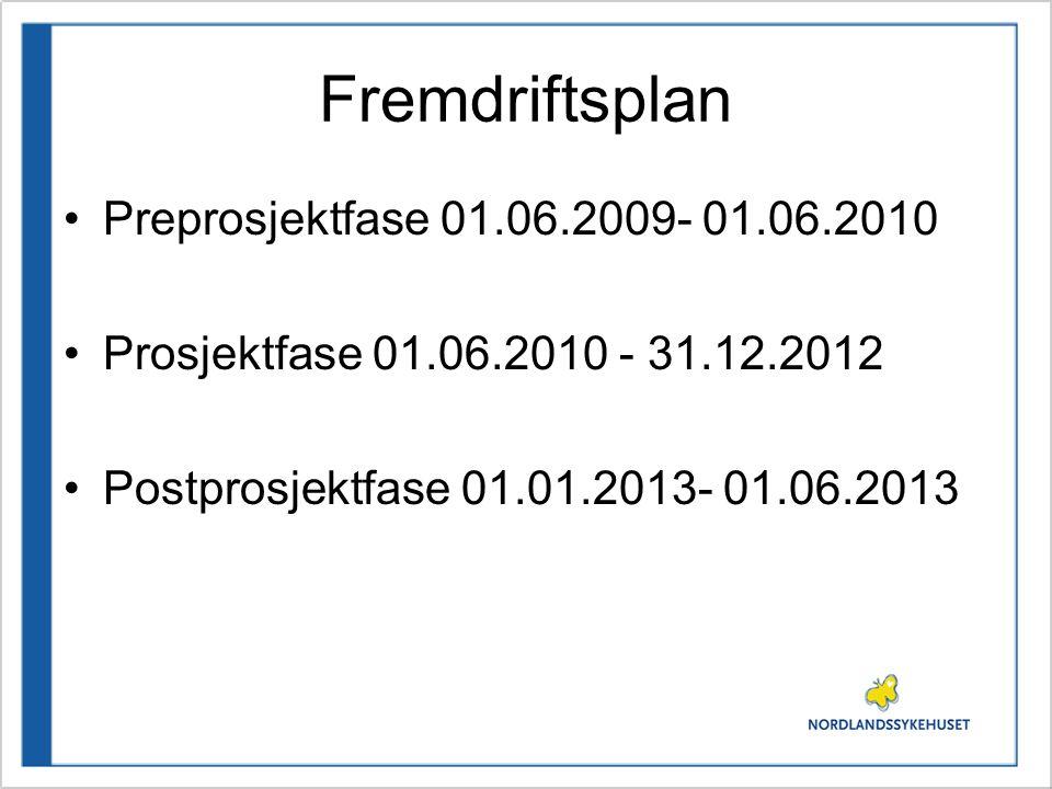 Fremdriftsplan Preprosjektfase 01.06.2009- 01.06.2010