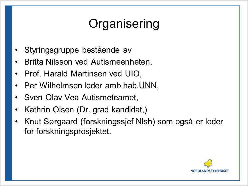 Organisering Styringsgruppe bestående av