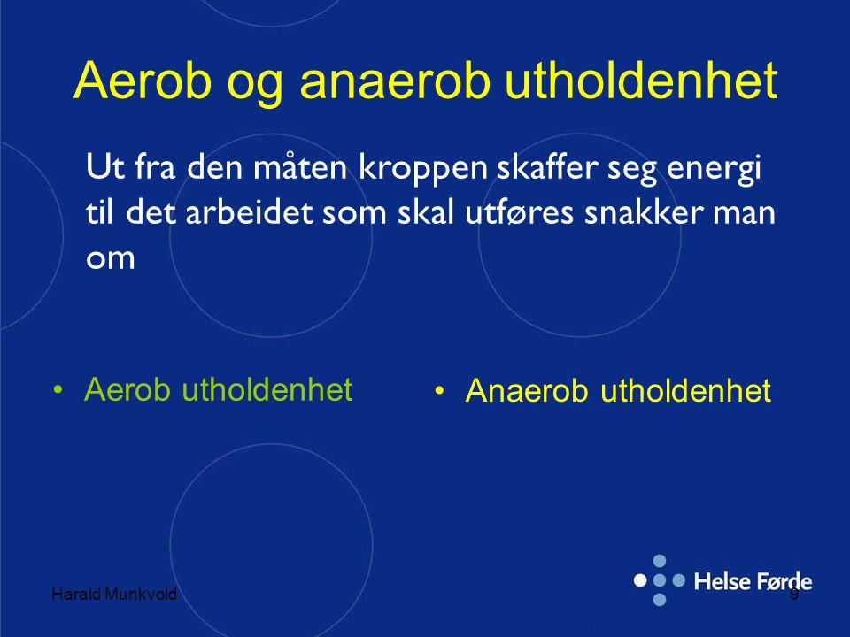 Aerob og anaerob utholdenhet