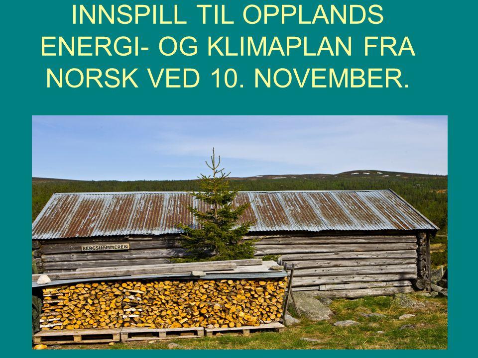 INNSPILL TIL OPPLANDS ENERGI- OG KLIMAPLAN FRA NORSK VED 10. NOVEMBER.