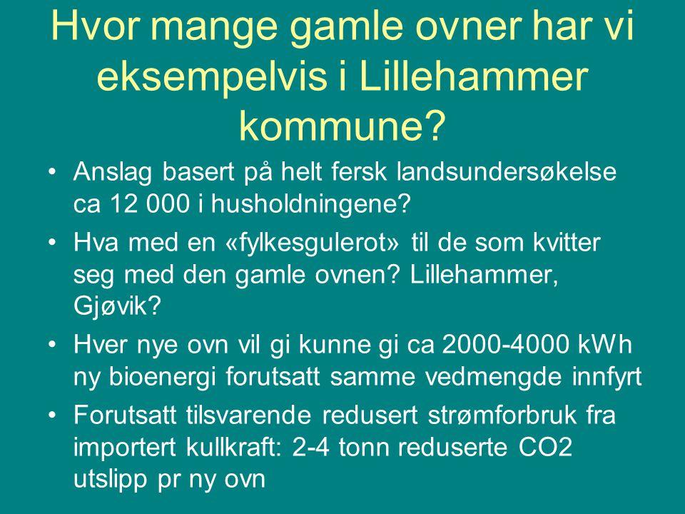Hvor mange gamle ovner har vi eksempelvis i Lillehammer kommune