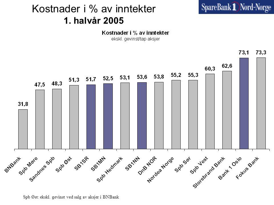 Kostnader i % av inntekter 1. halvår 2005