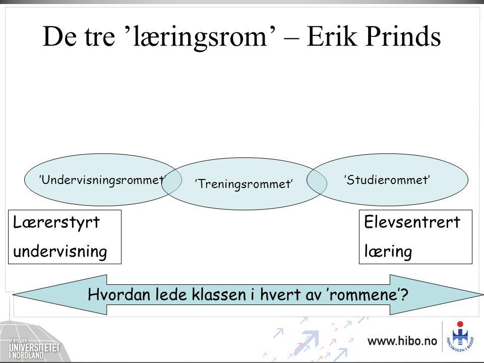 De tre 'læringsrom' – Erik Prinds
