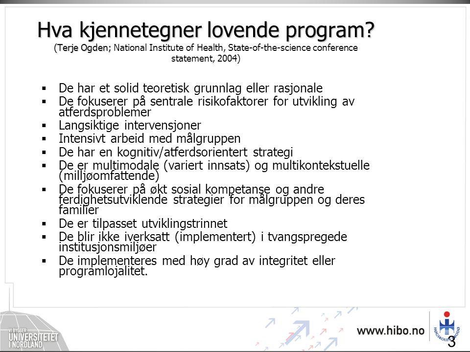 Hva kjennetegner lovende program