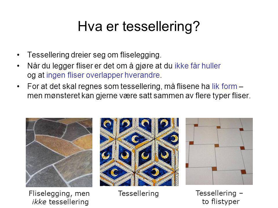 Hva er tessellering Tessellering dreier seg om fliselegging.