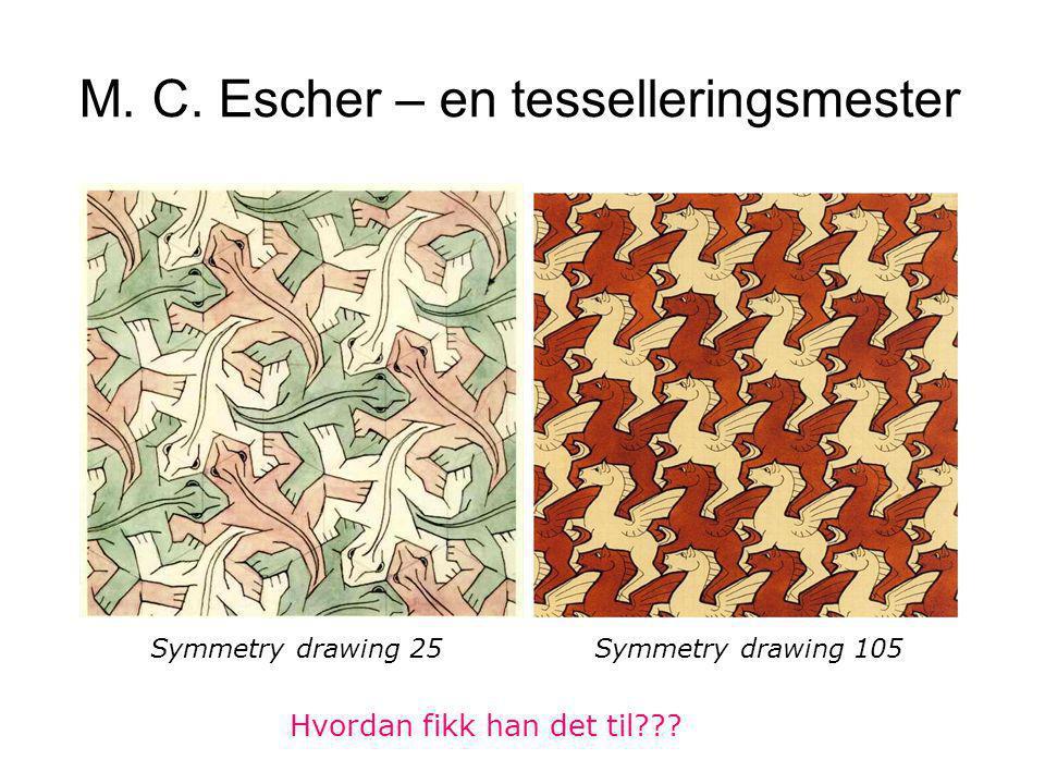 M. C. Escher – en tesselleringsmester