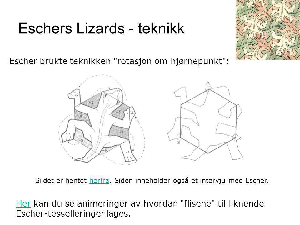 Eschers Lizards - teknikk