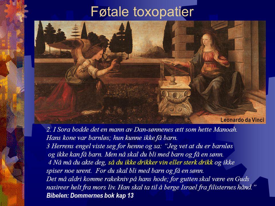Føtale toxopatier Leonardo da Vinci. 2. I Sora bodde det en mann av Dan-sønnenes ætt som hette Manoah.