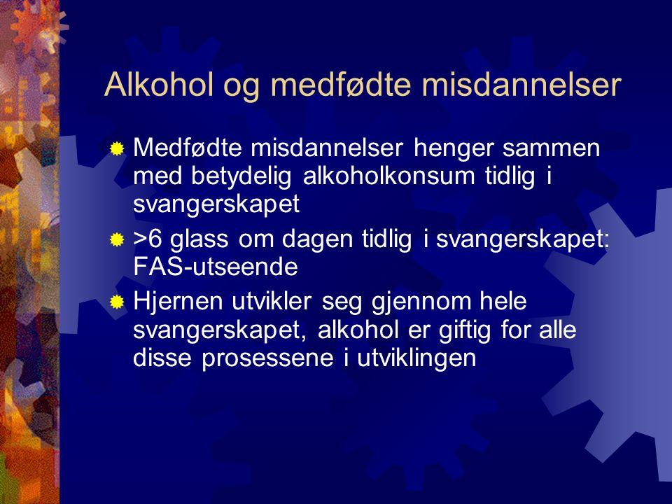 Alkohol og medfødte misdannelser