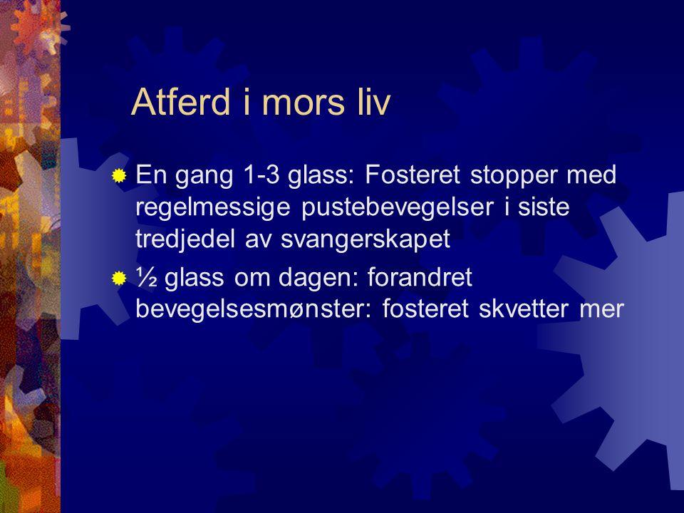 Atferd i mors liv En gang 1-3 glass: Fosteret stopper med regelmessige pustebevegelser i siste tredjedel av svangerskapet.