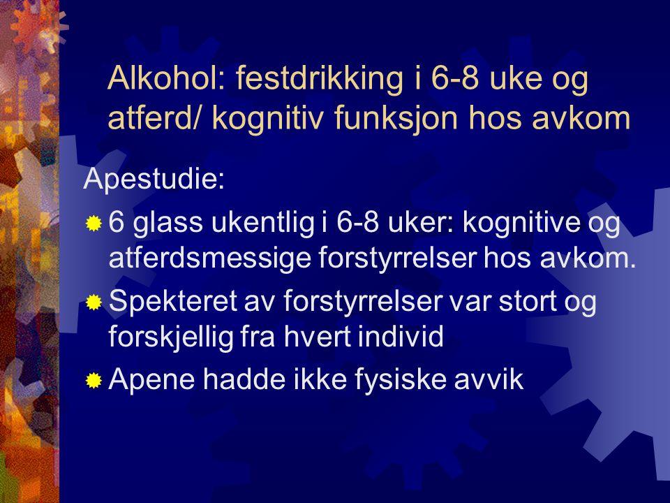 Alkohol: festdrikking i 6-8 uke og atferd/ kognitiv funksjon hos avkom