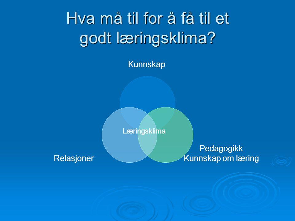 Hva må til for å få til et godt læringsklima