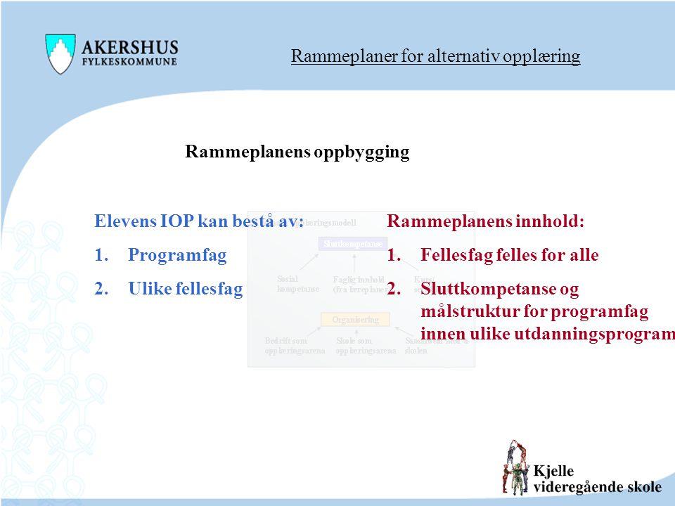 Rammeplaner for alternativ opplæring