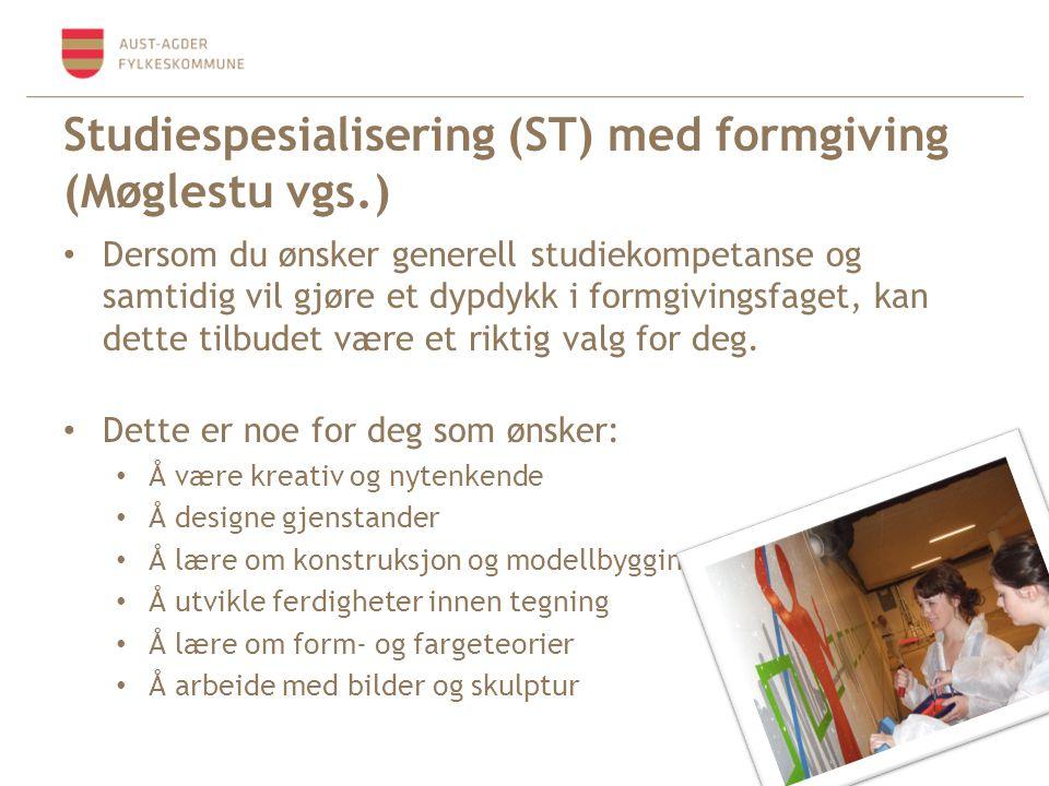 Studiespesialisering (ST) med formgiving (Møglestu vgs.)
