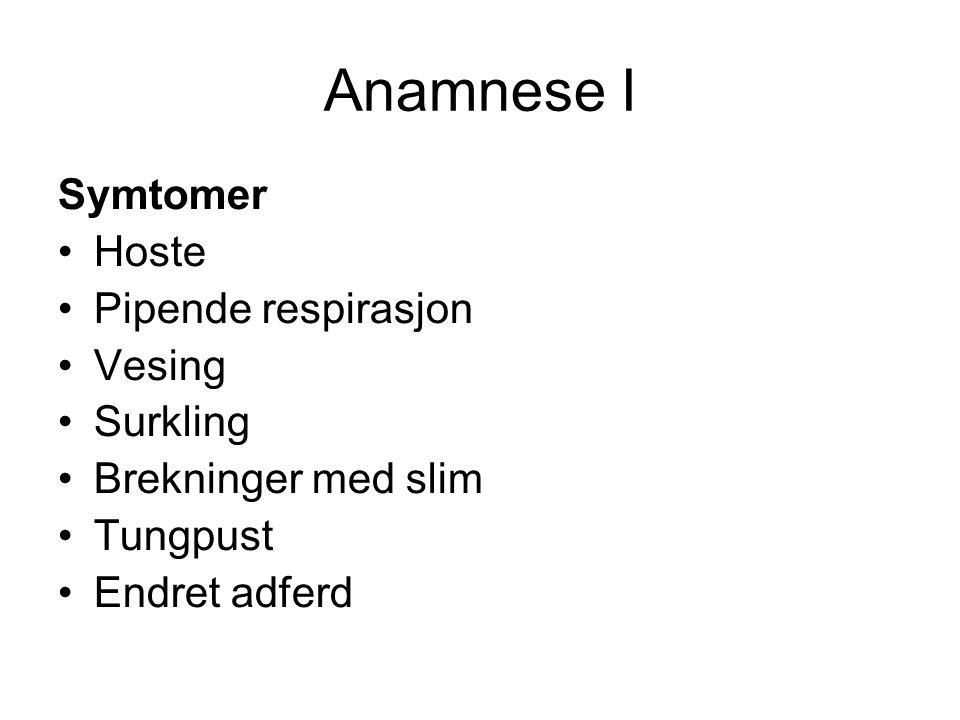 Anamnese I Symtomer Hoste Pipende respirasjon Vesing Surkling