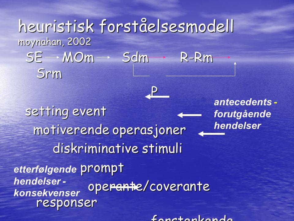 heuristisk forståelsesmodell moynahan, 2002