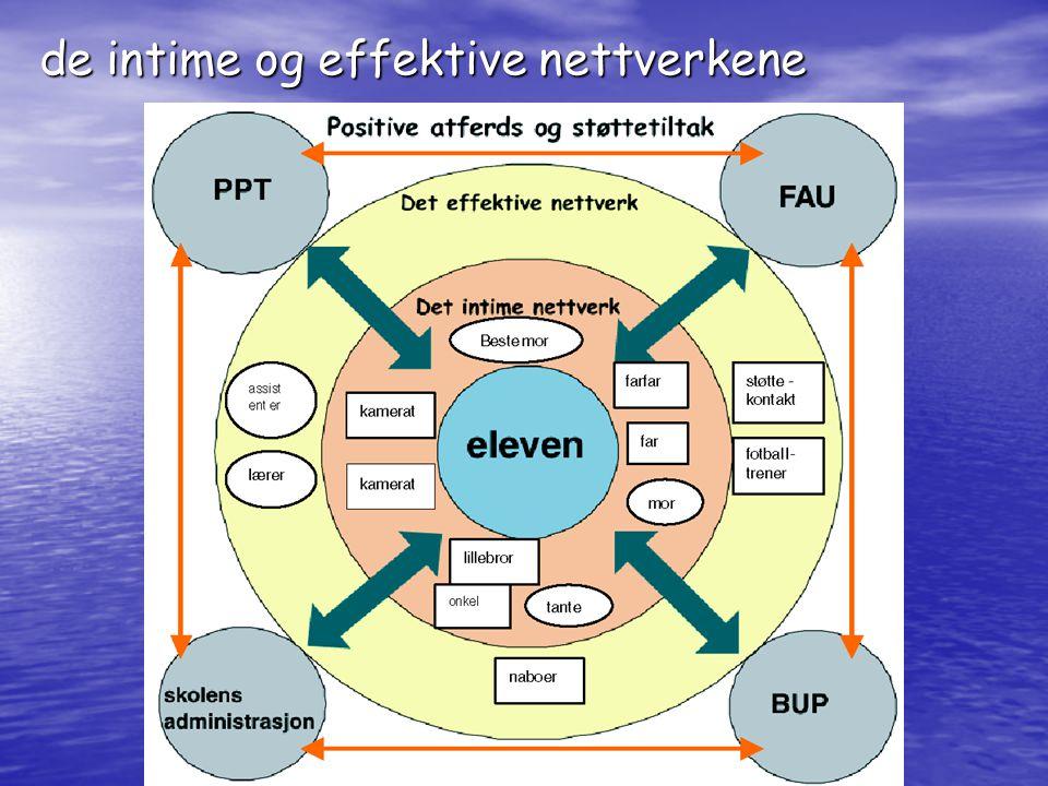 de intime og effektive nettverkene