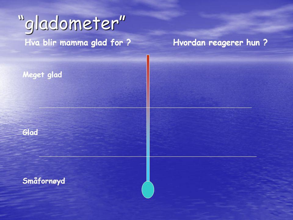 gladometer Hva blir mamma glad for Hvordan reagerer hun
