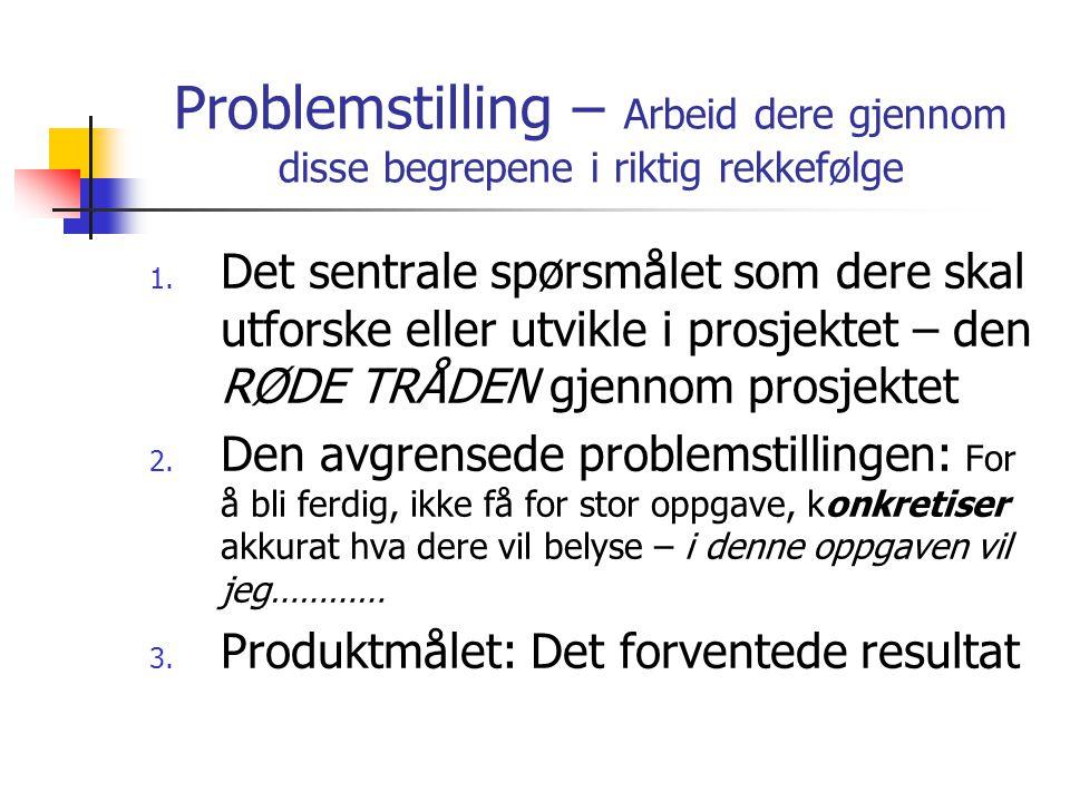 Problemstilling – Arbeid dere gjennom disse begrepene i riktig rekkefølge