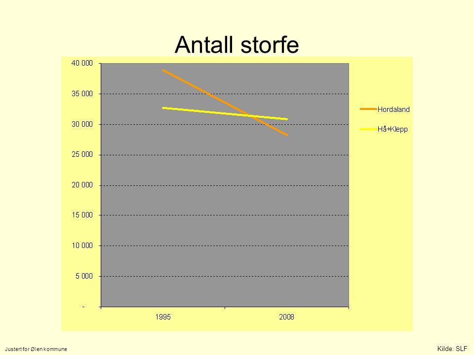 Antall storfe Justert for Ølen kommune Kilde: SLF 5