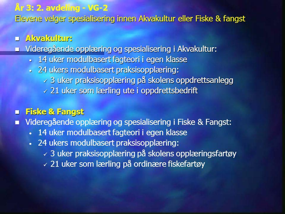 År 3: 2. avdeling - VG-2 Elevene velger spesialisering innen Akvakultur eller Fiske & fangst. Akvakultur: