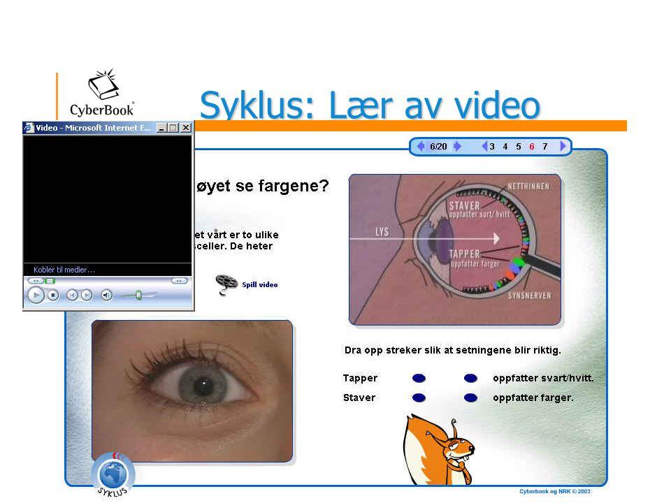 Syklus: Lær av video