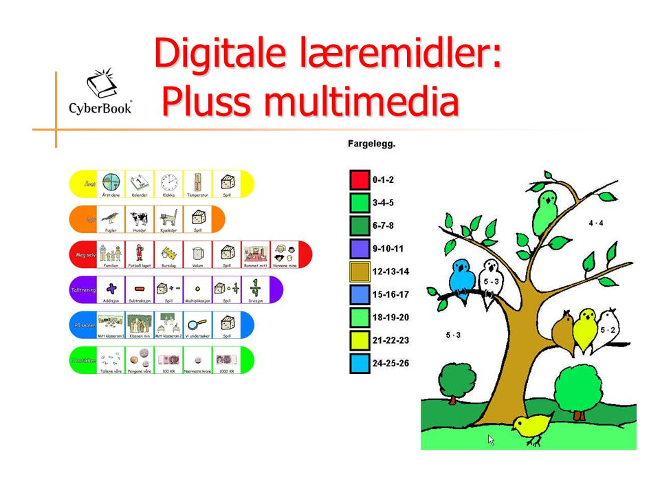 Digitale læremidler: Pluss multimedia