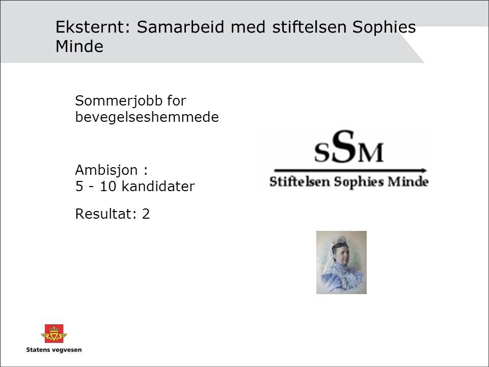 Eksternt: Samarbeid med stiftelsen Sophies Minde