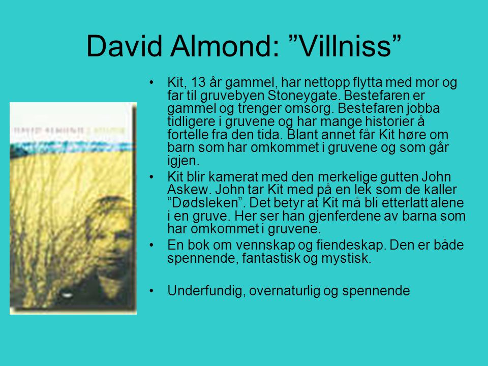 David Almond: Villniss