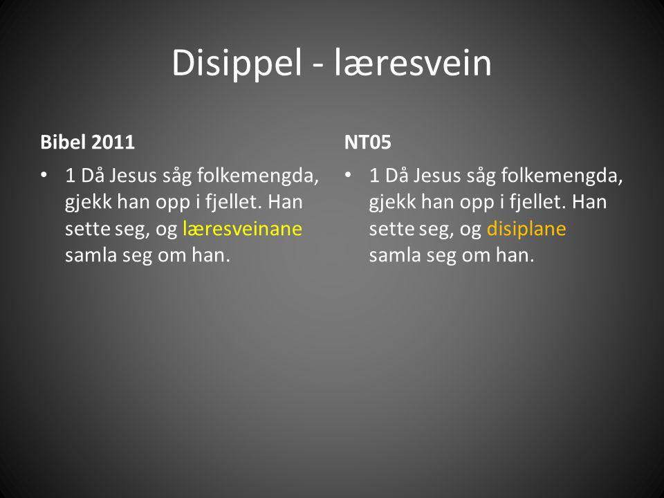 Disippel - læresvein Bibel 2011 NT05