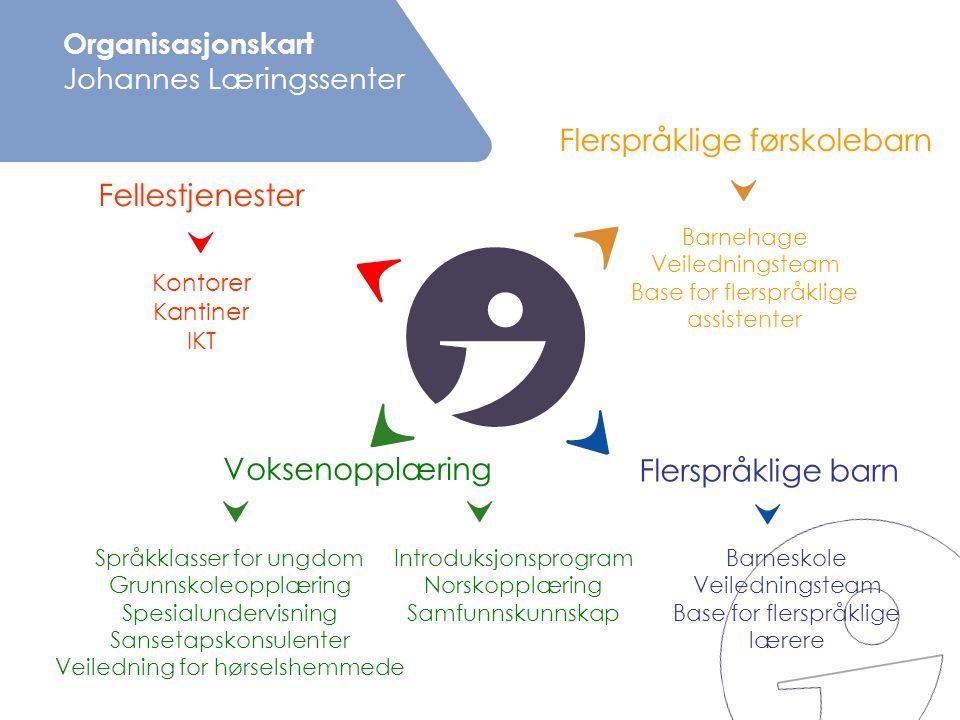 Organisasjonskart Johannes Læringssenter