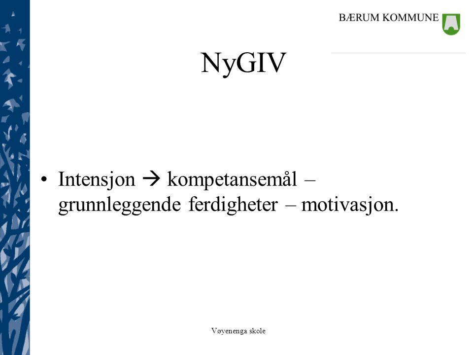 NyGIV Intensjon  kompetansemål – grunnleggende ferdigheter – motivasjon.