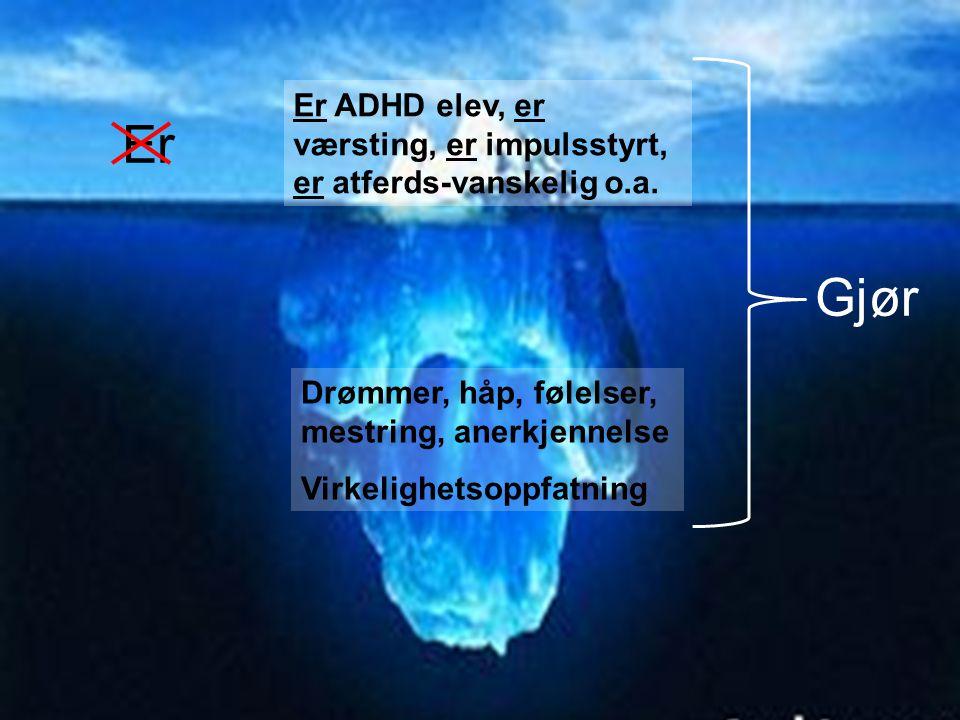 Er ADHD elev, er værsting, er impulsstyrt, er atferds-vanskelig o.a.