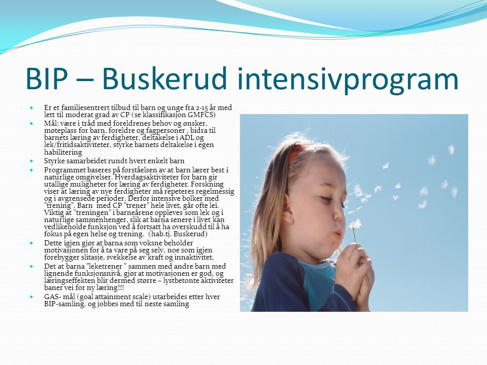 BIP – Buskerud intensivprogram