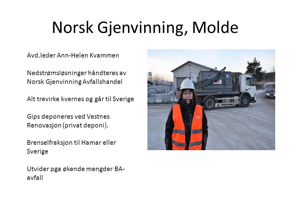 Norsk Gjenvinning, Molde
